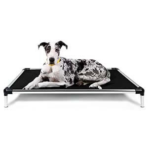 K9 Ballistic Chewy Proof Elevated Bed