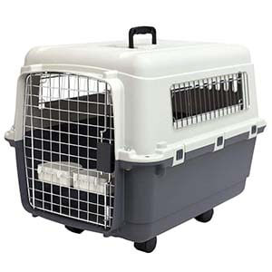 Pet Kennels Medium