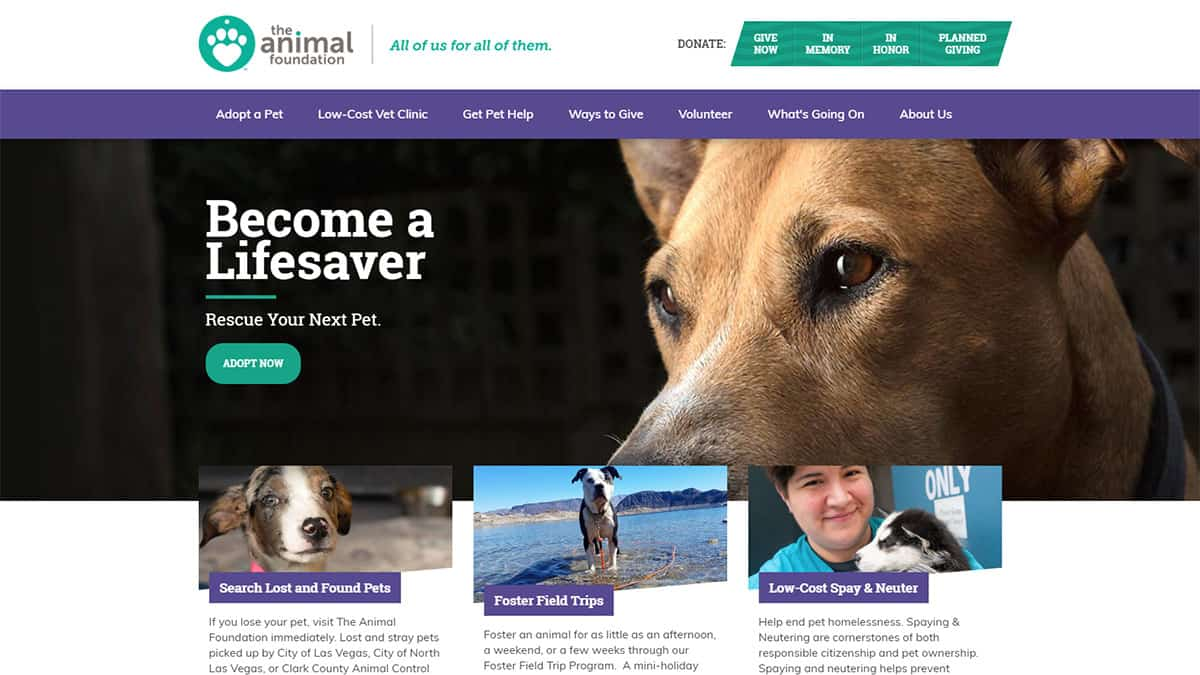 The Animal Foundation
