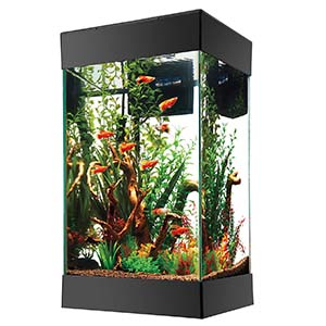 Aqueon 15 Gallon Aquarium Kit