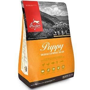 ORIJEN Puppy Premium Food