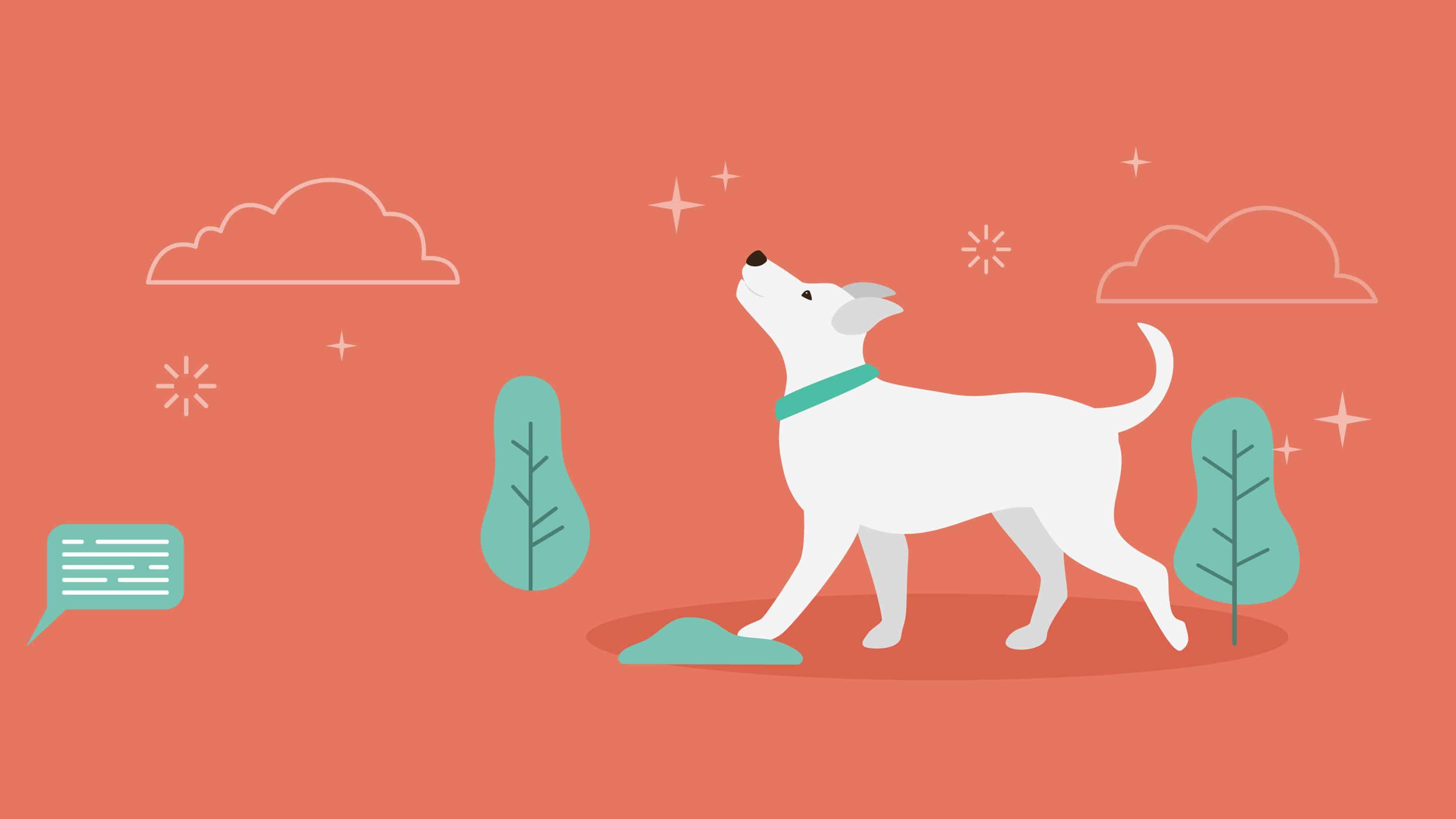 10 Most-Googled Dog Questions - Header