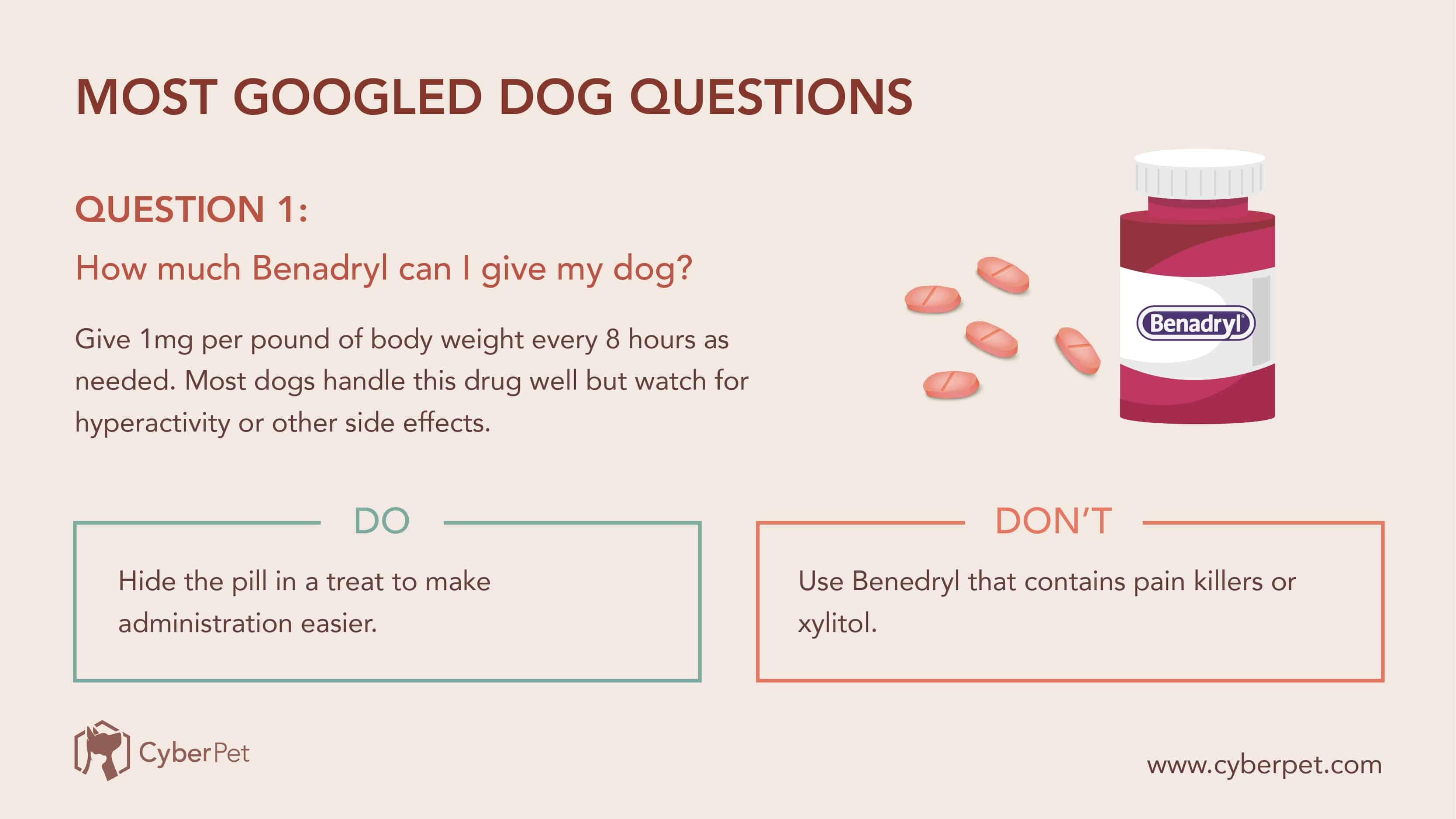 10 Most-Googled Dog Questions - Q1