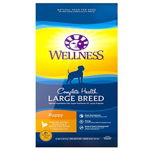 Wellness Large Breed Complete Health Puppy