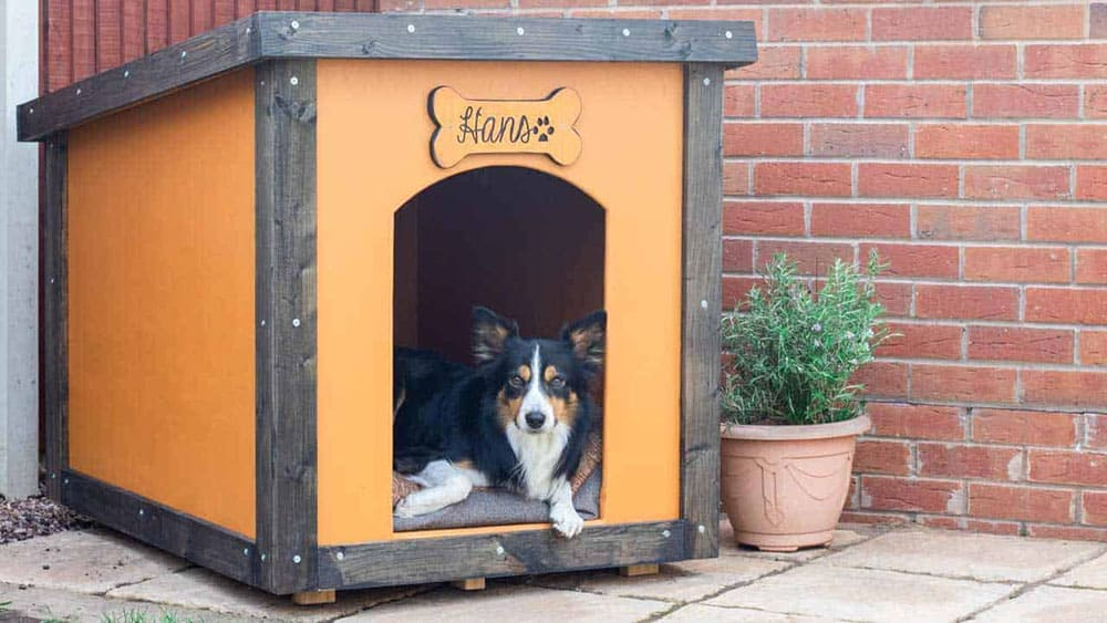 4. Elaborate Outdoor Dog House